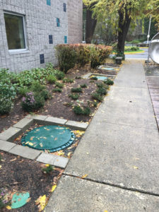 Redmond-Emergency-Septic-Cleaning
