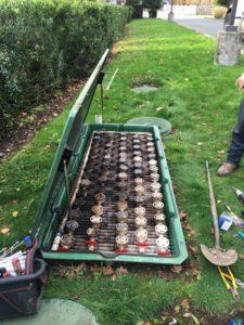drain-field-repair-eatonville-wa