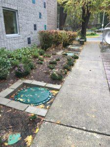 drainage-solutions-edgewood-wa