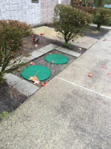 drain-field-repair-steilacoom-wa