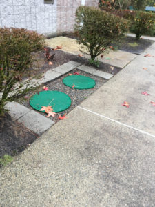 New-Septic-System-Issaquah-WA
